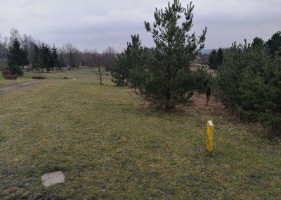 Pohled z výhoziště - koš je úplně vpravo za stromky