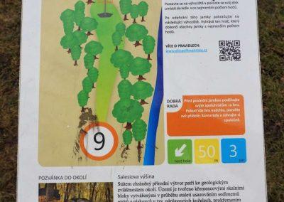 9 info